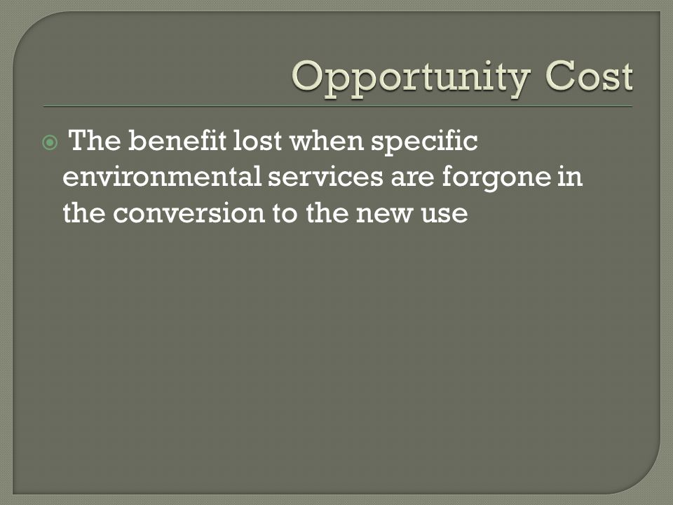  The benefit lost when specific environmental services are forgone in the conversion to the new use