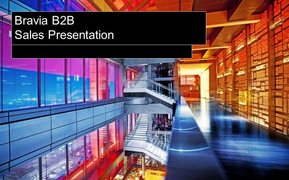 SONY PROFESSIONAL Display B2B market trend Volume