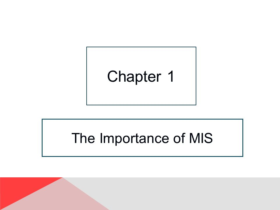 The Importance of MIS Chapter 1