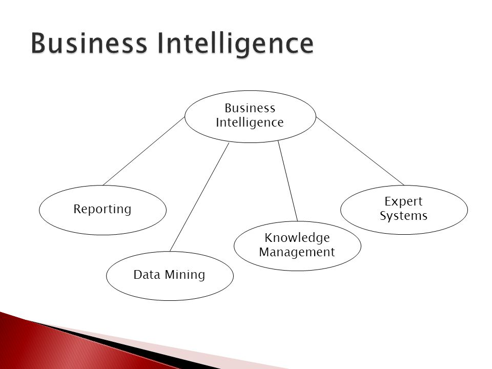 Reporting Business Intelligence Data Mining Knowledge Management Expert Systems