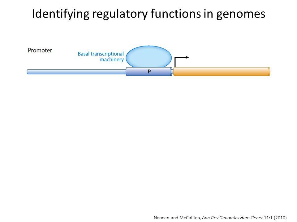 Noonan and McCallion, Ann Rev Genomics Hum Genet 11:1 (2010) Identifying regulatory functions in genomes