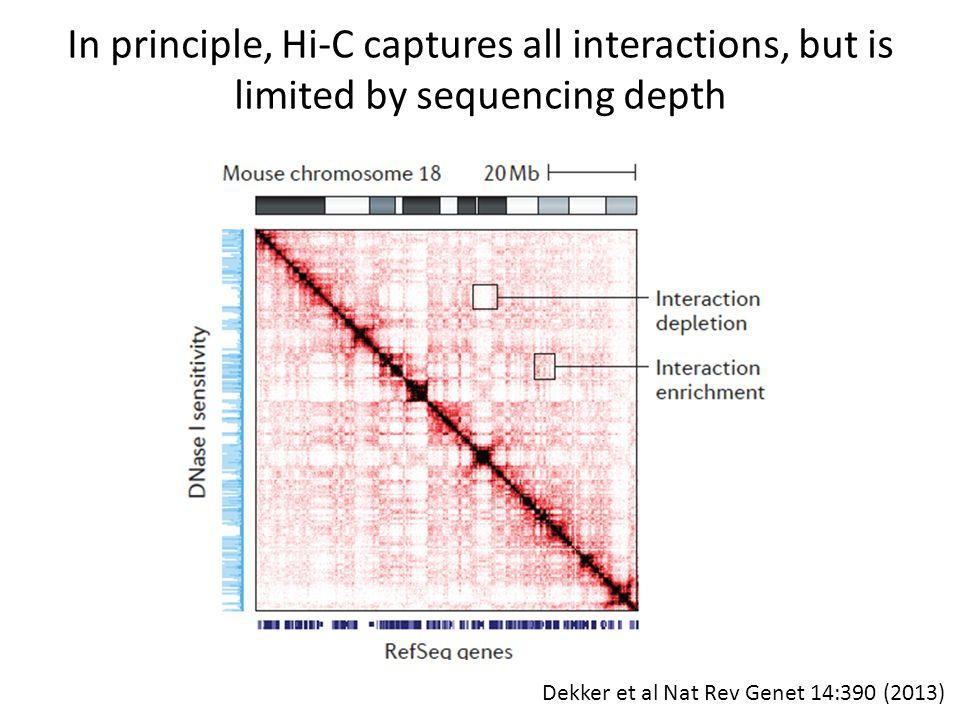 In principle, Hi-C captures all interactions, but is limited by sequencing depth Dekker et al Nat Rev Genet 14:390 (2013)
