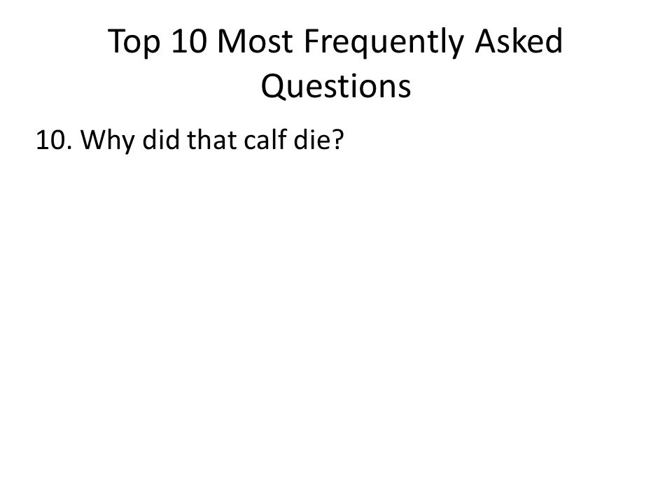 Top 10 Most Frequently Asked Questions 10. Why did that calf die?