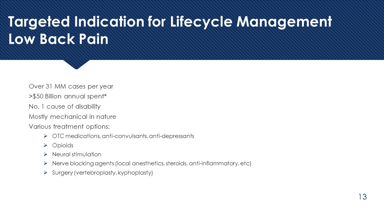 Targeted Indication for Lifecycle Management Low Back Pain Over 31 MM cases per year >$50 Billion annual spent* No. 1 cause of disability Mostly mecha