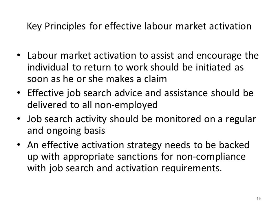 Key Principles for effective labour market activation Labour market activation to assist and encourage the individual to return to work should be initiated as soon as he or she makes a claim Effective job search advice and assistance should be delivered to all non-employed Job search activity should be monitored on a regular and ongoing basis An effective activation strategy needs to be backed up with appropriate sanctions for non-compliance with job search and activation requirements.