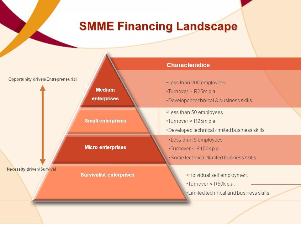 Medium enterprises Small enterprises Micro enterprises Survivalist enterprises Less than 200 employees Turnover > R25m p.a.