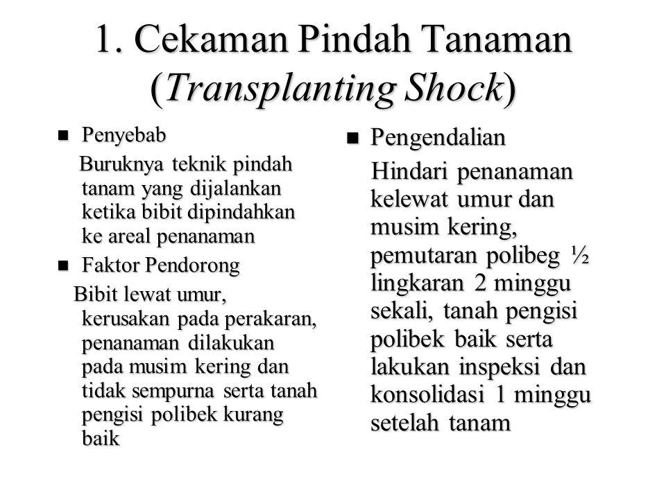 1. Cekaman Pindah Tanaman (Transplanting Shock) Penyebab Penyebab Buruknya teknik pindah tanam yang dijalankan ketika bibit dipindahkan ke areal penan
