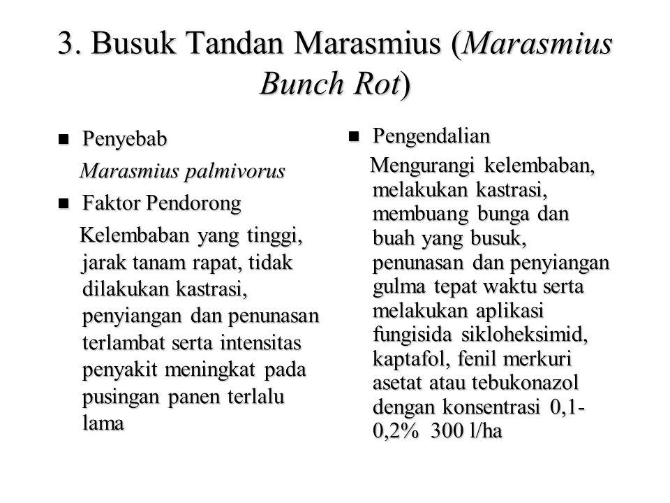 3. Busuk Tandan Marasmius (Marasmius Bunch Rot) Penyebab Penyebab Marasmius palmivorus Marasmius palmivorus Faktor Pendorong Faktor Pendorong Kelembab