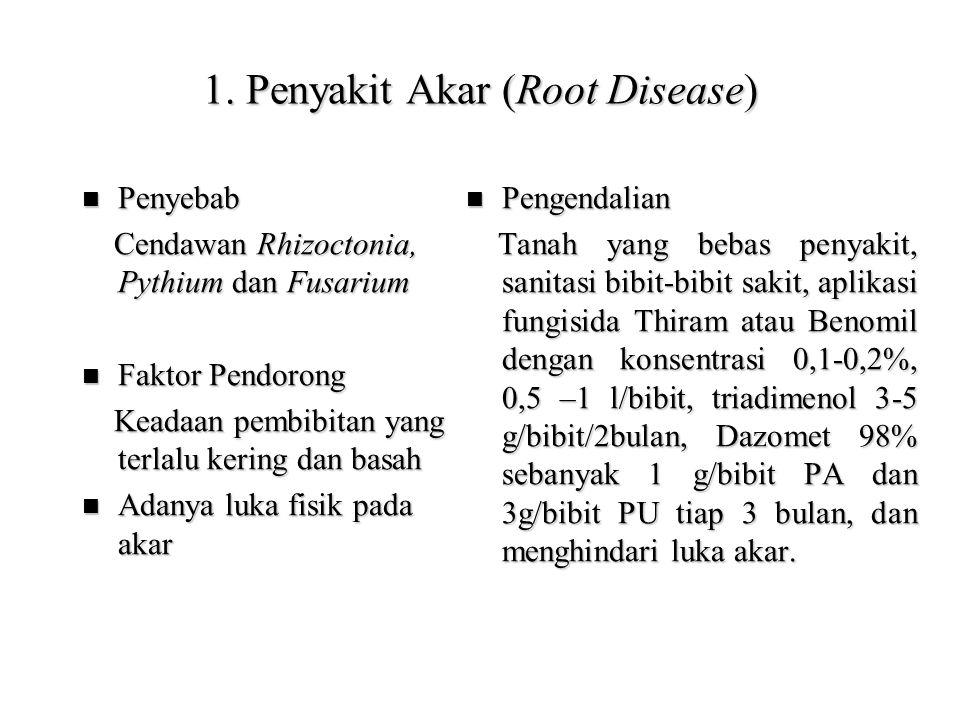 1. Penyakit Akar (Root Disease) Penyebab Penyebab Cendawan Rhizoctonia, Pythium dan Fusarium Cendawan Rhizoctonia, Pythium dan Fusarium Faktor Pendoro