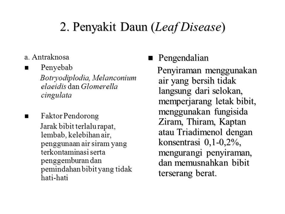 2.Penyakit Daun (Leaf Disease) a.