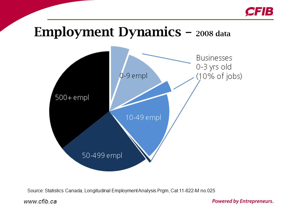 www.cfib.ca Employment Dynamics – 2008 data Source: Statistics Canada, Longitudinal Employment Analysis Prgm, Cat 11-622-M no.025
