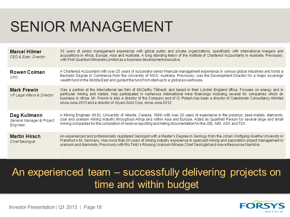 SENIOR MANAGEMENT An experienced team – successfully delivering projects on time and within budget Investor Presentation | Q1 2015 | Page 18 Marcel Hilmer CEO & Exec.