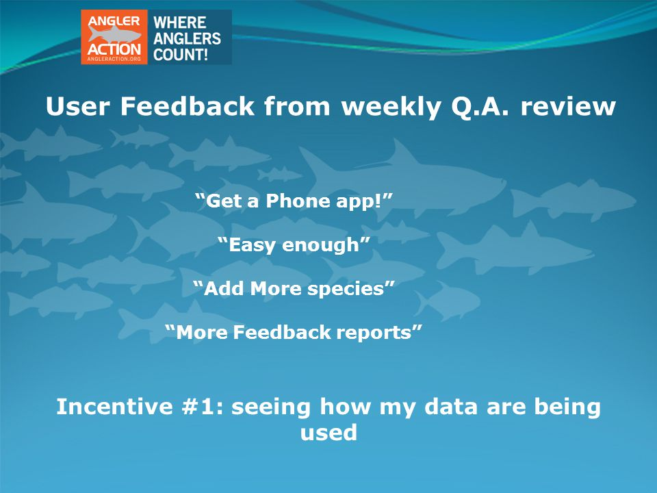 User Feedback from weekly Q.A.