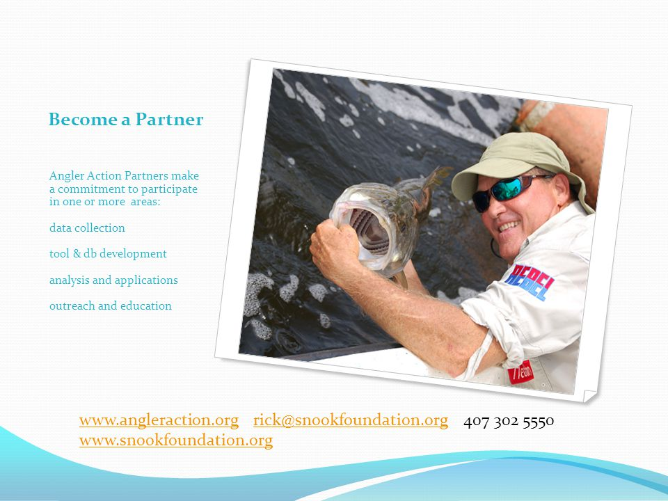 Become a Partner Angler Action Partners make a commitment to participate in one or more areas: data collection tool & db development analysis and applications outreach and education www.angleraction.orgwww.angleraction.org rick@snookfoundation.org 407 302 5550rick@snookfoundation.org www.snookfoundation.org