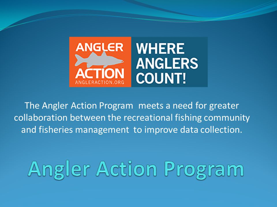 The Angler Action Program meets a need for greater collaboration between the recreational fishing community and fisheries management to improve data collection.