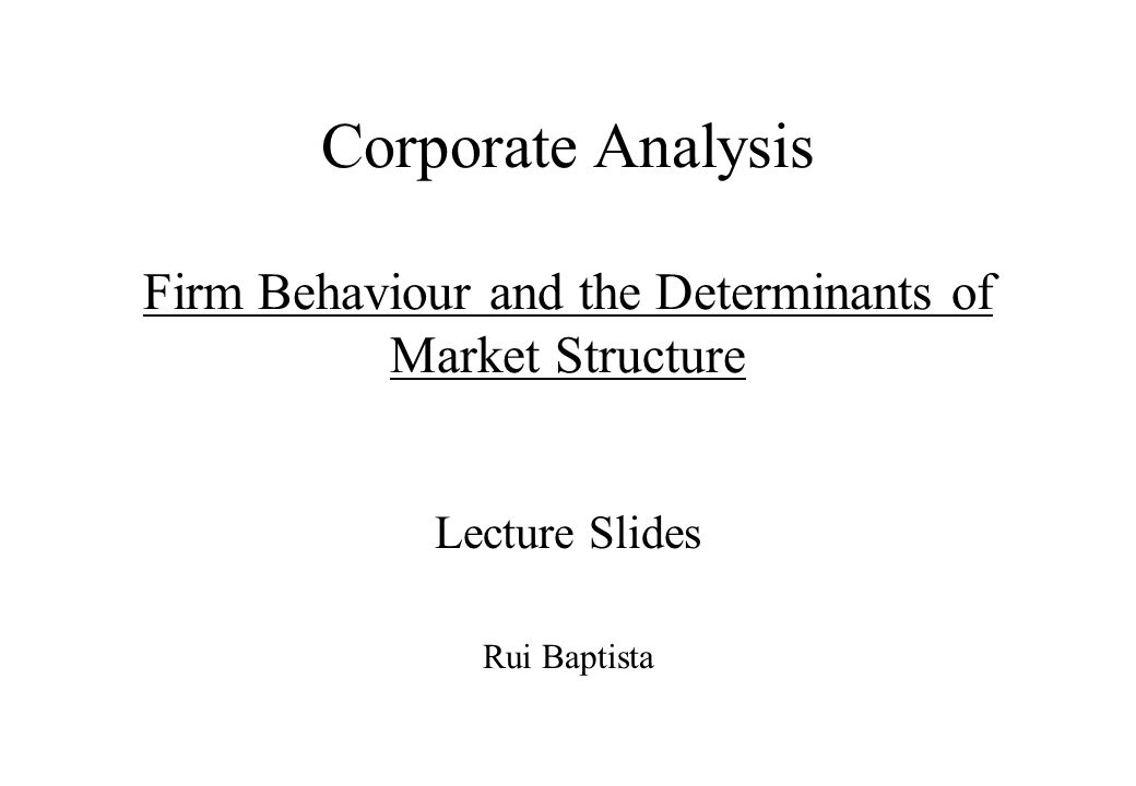 Corporate Analysis Firm Behaviour and the Determinants of Market Structure Lecture Slides Rui Baptista