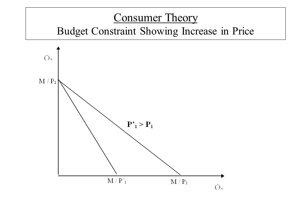 Consumer Theory Budget Constraint Showing Increase in Price