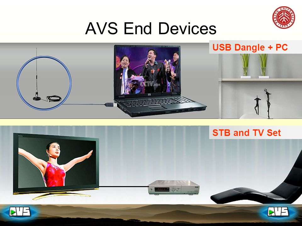 USB Dangle + PC STB and TV Set AVS End Devices