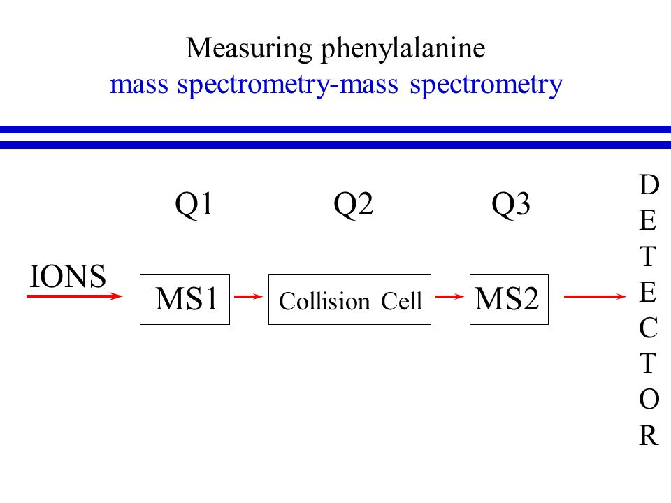 Measuring phenylalanine mass spectrometry-mass spectrometry DETECTORDETECTOR MS1 Collision Cell MS2 IONS Q1 Q2 Q3