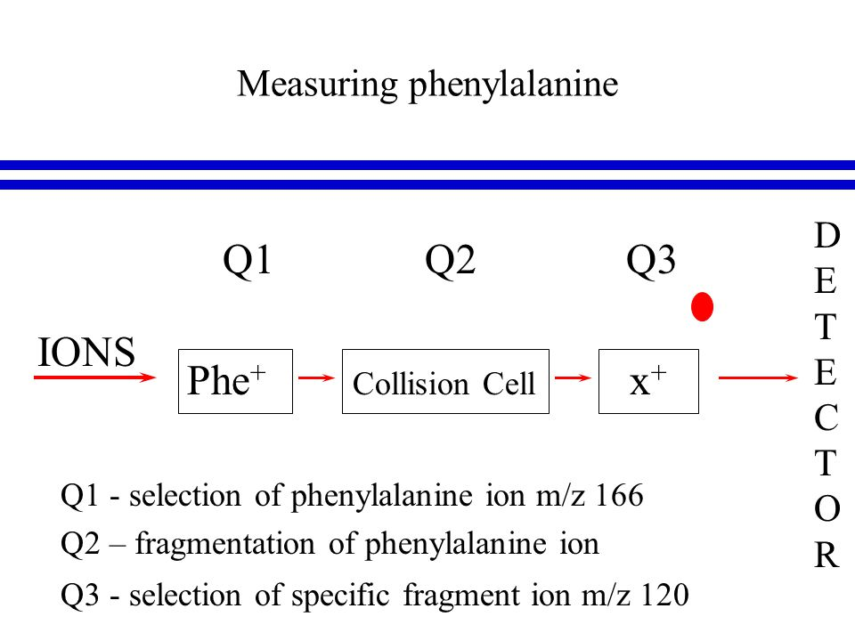 Measuring phenylalanine DETECTORDETECTOR Phe + Collision Cell x + IONS Q1 Q2 Q3 Q1 - selection of phenylalanine ion m/z 166 Q2 – fragmentation of phenylalanine ion Q3 - selection of specific fragment ion m/z 120