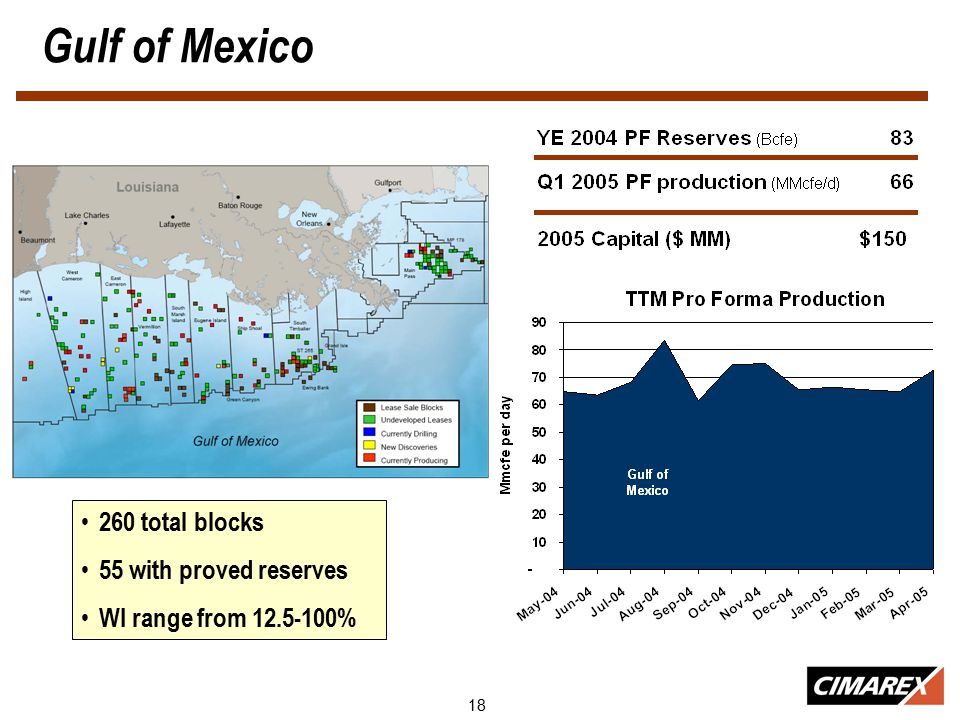 18 Gulf of Mexico Shallow Water Gulf of Mexico 260 total blocks 55 with proved reserves WI range from 12.5-100%