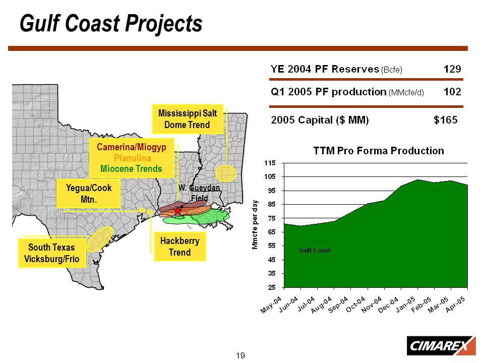 19 Gulf Coast Projects Mississippi Salt Dome Trend W.