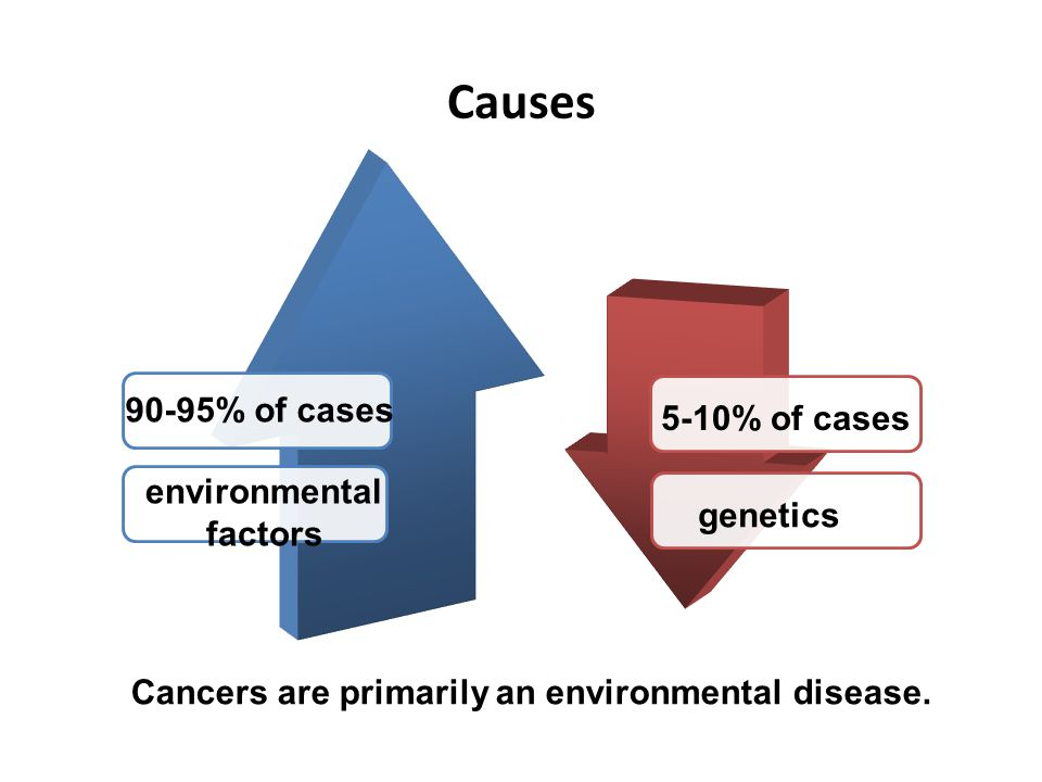 Cancers are primarily an environmental disease.