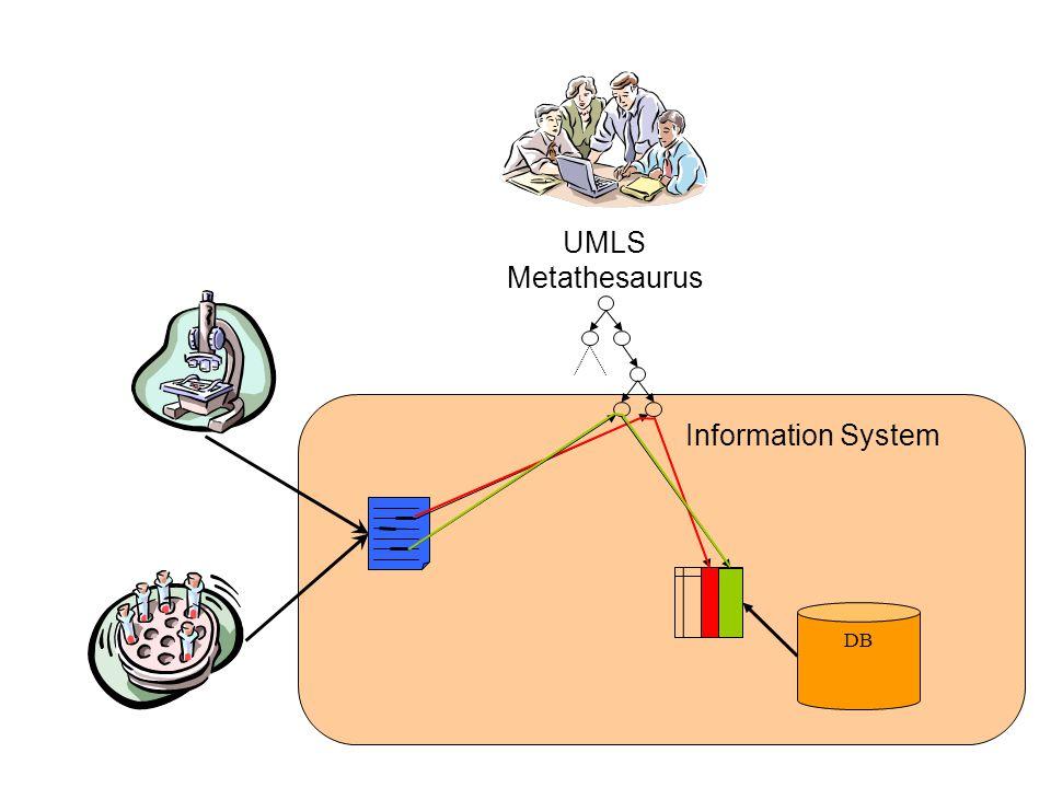 DB UMLS Metathesaurus Information System
