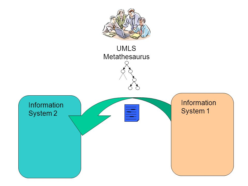 UMLS Metathesaurus Information System 2 Information System 1