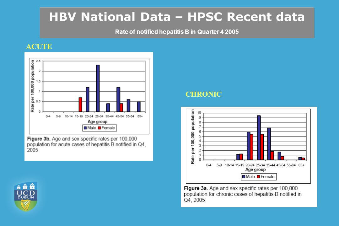 HBV National Data – HPSC Recent data Rate of notified hepatitis B in Quarter 4 2005 ACUTE CHRONIC