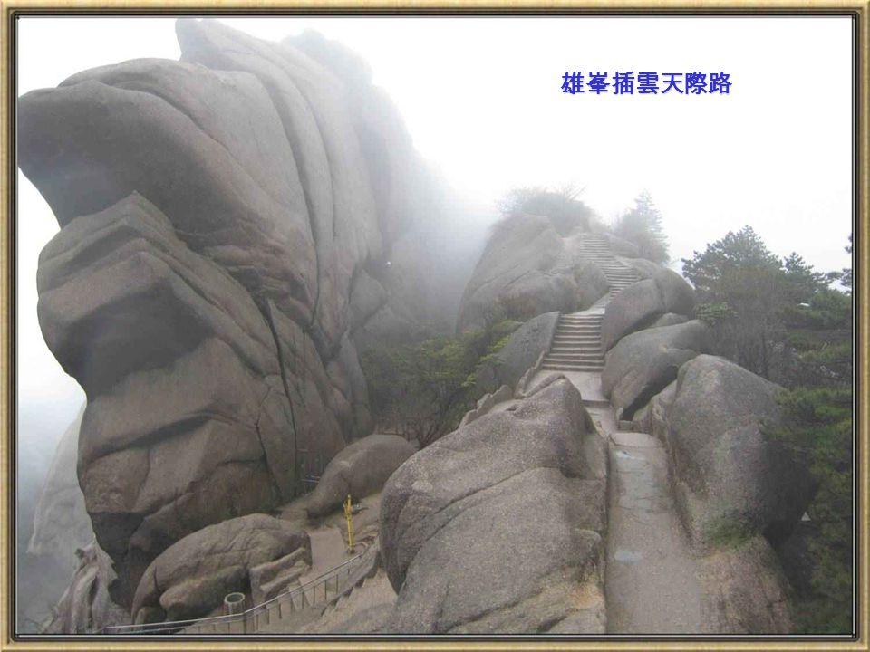 蓮花峰是黃山第一高峰,上此峰有一望觀四方之感
