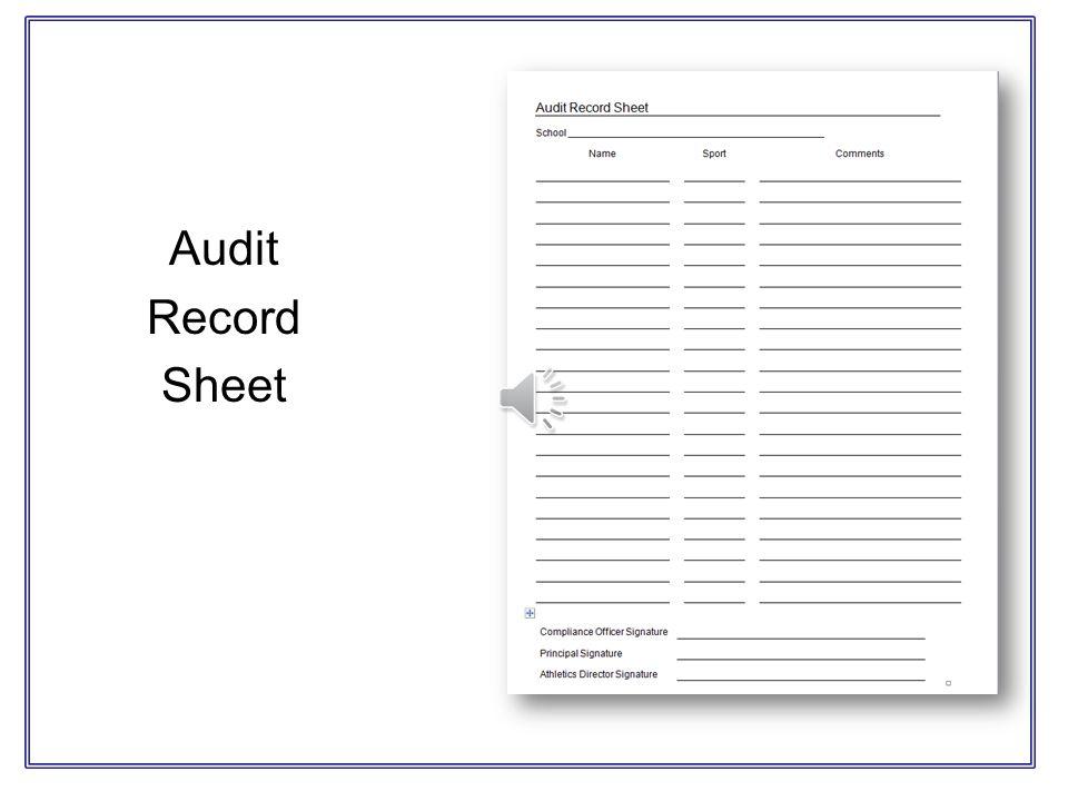 Audit Record Sheet