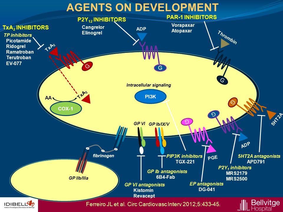 G COX-1 AA TxA 2 G ADP G Thrombin TxA 2 INHIBITORS P2Y 12 INHIBITORS PAR-1 INHIBITORS TP inhibitors Picotamide Ridogrel Ramatroban Terutroban EV-077 T