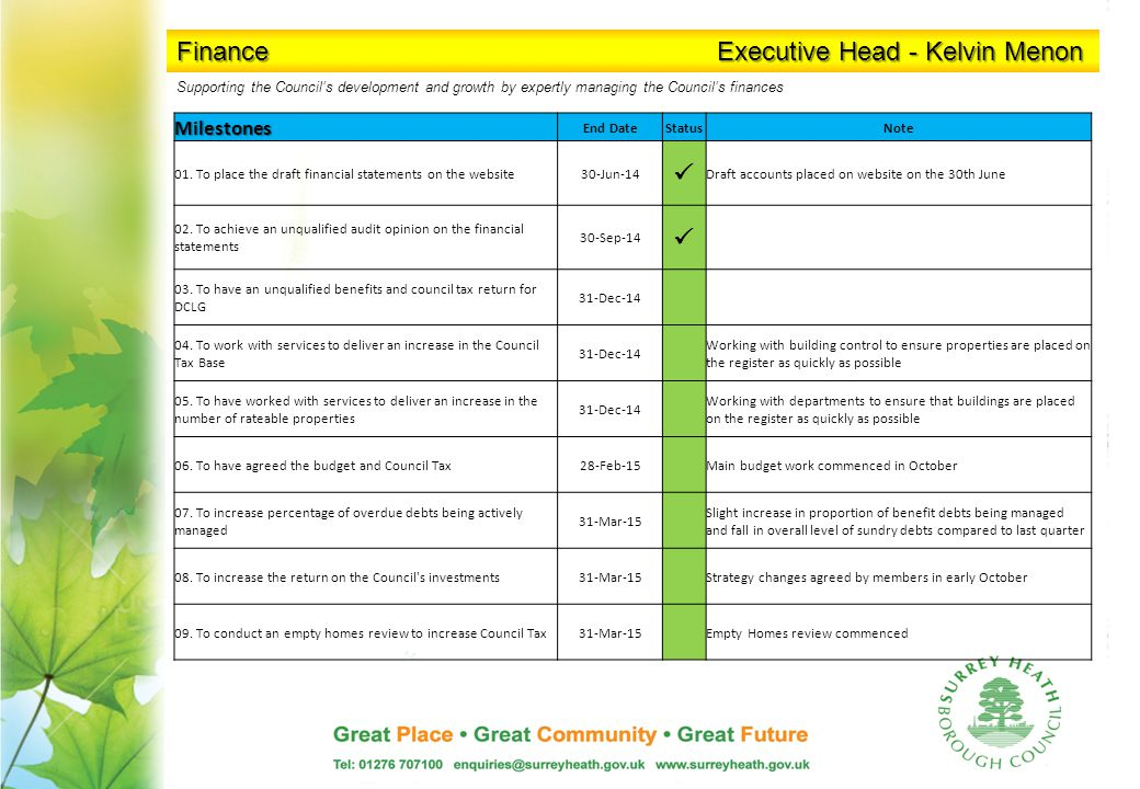 Finance Executive Head - Kelvin Menon Milestones End DateStatusNote 01.