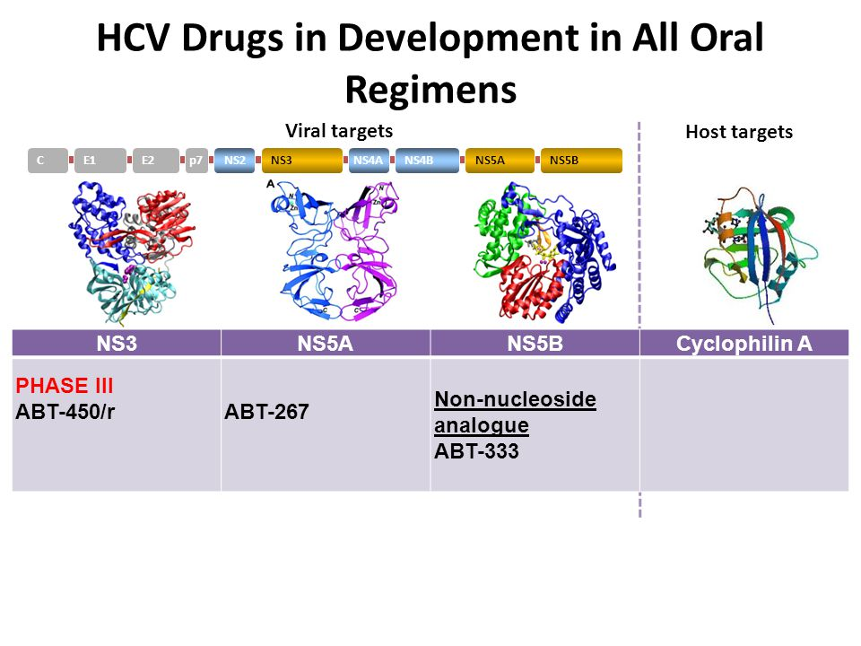 E1CE2p7NS2NS3NS4ANS4BNS5ANS5B Viral targets Host targets HCV Drugs in Development in All Oral Regimens * *On clinical hold, Idenix press release; **On