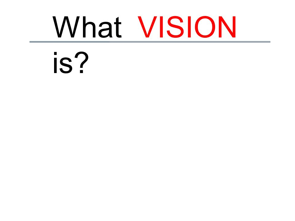 What VISION is