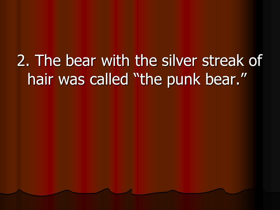 2. The bear with the silver streak of hair was called the punk bear.