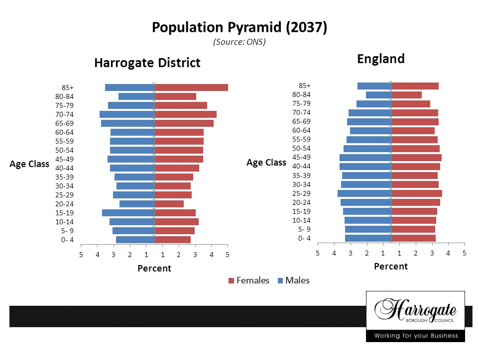 Population Pyramid (2037) (Source: ONS) Harrogate District England