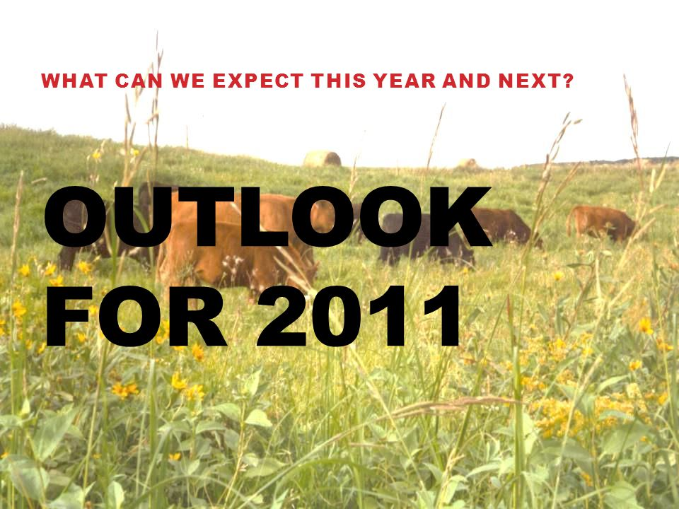 OUTLOOK FOR 2011 WHAT CAN WE EXPECT THIS YEAR AND NEXT?