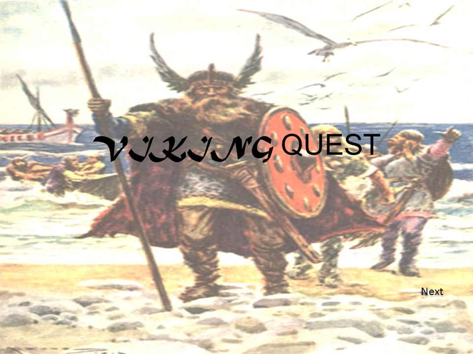 The test Q1 What do Vikings were? sacks B B Leather and wool cloth C C A live alligator. A