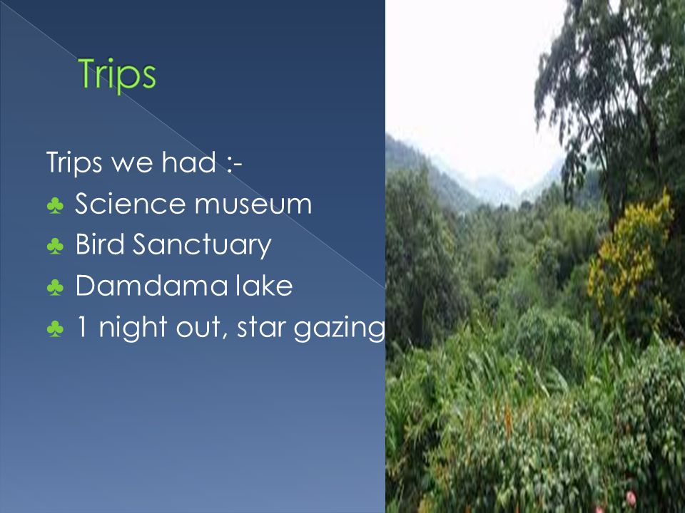 Trips we had :- ♣ Science museum ♣ Bird Sanctuary ♣ Damdama lake ♣ 1 night out, star gazing