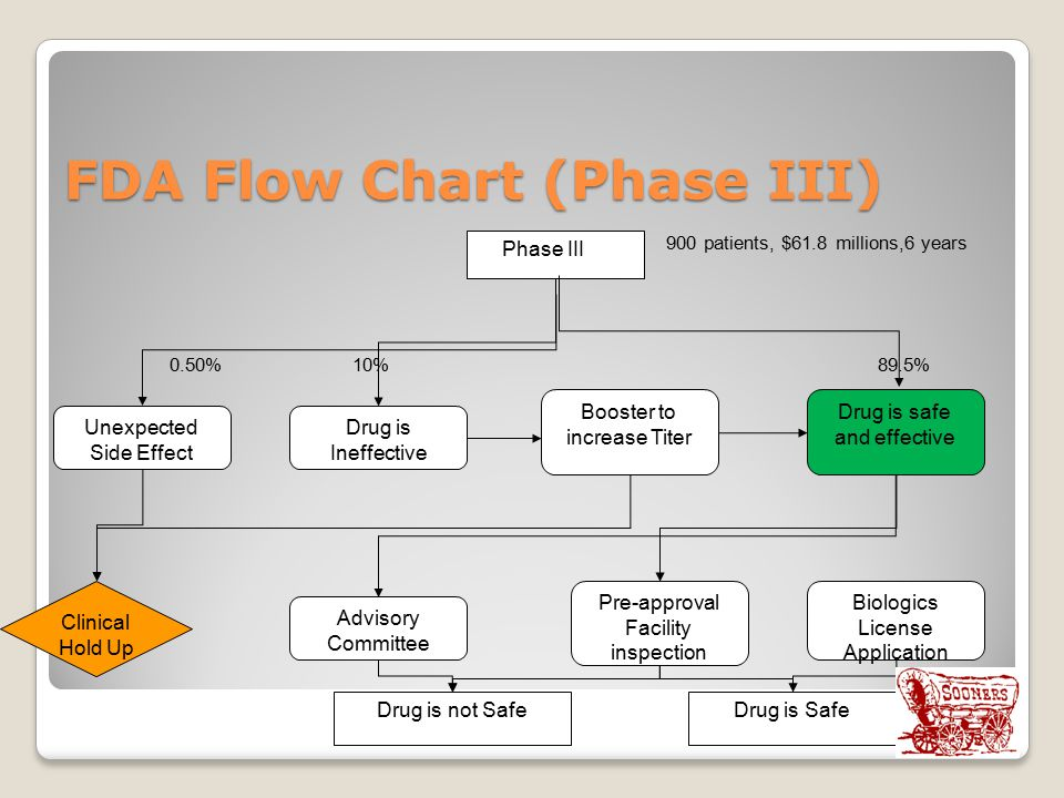 FDA Flow Chart (Phase III) 900 patients, $61.8 millions,6 years 0.50% 10% 89.5% Phase III Unexpected Side Effect Drug is Ineffective Booster to increase Titer Drug is safe and effective Biologics License Application Pre-approval Facility inspection Advisory Committee Clinical Hold Up Drug is not SafeDrug is Safe