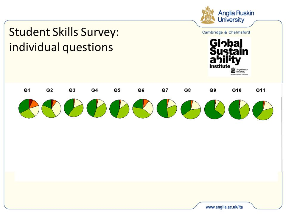 Student Skills Survey: individual questions