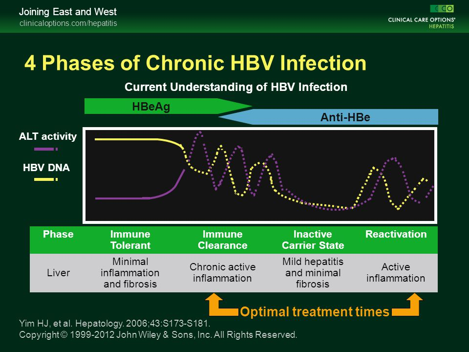 clinicaloptions.com/hepatitis Joining East and West PhaseImmune Tolerant Immune Clearance Inactive Carrier State Reactivation Liver Minimal inflammati
