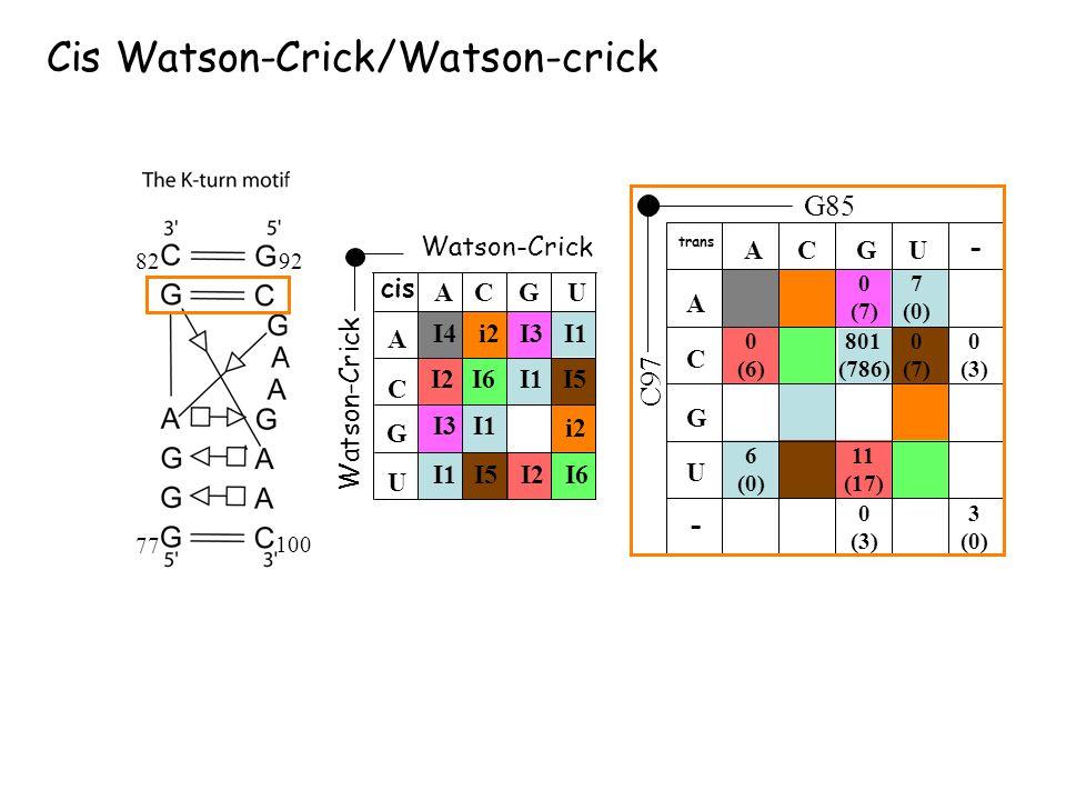 Watson-Crick I6 A CG U U A C G i2 I3 I4 i2 I1 I5 I2 cis I3 I2 I5I6 Watson-Crick Cis Watson-Crick/Watson-crick G85 C97 ACGU U A C G 7 (0) trans 0 (7) -
