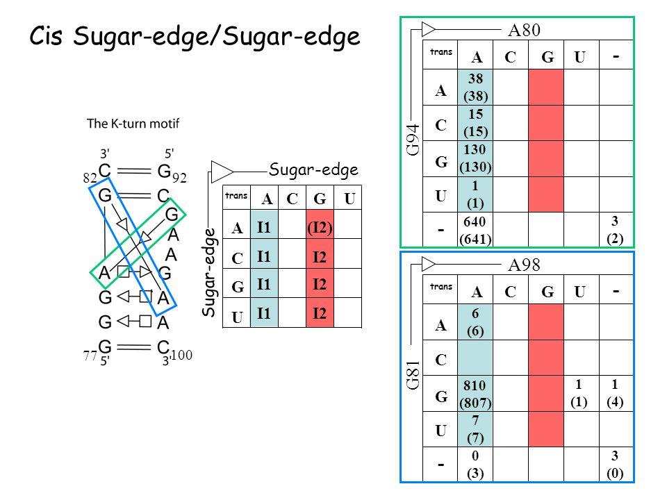A CG U U A C G I1 (I2) I2 trans Sugar-edge A98 G81 ACGU U A C G 6 (6) trans - - 810 (807) 1 (1) 1 (4) 7 (7) 0 (3) 3 (0) 640 (641) 3 (2) A80 G94 ACGU U