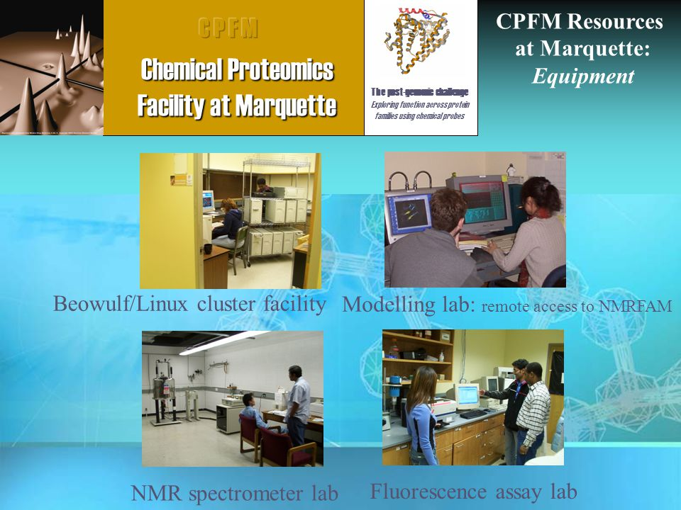 Beowulf/Linux cluster facility Modelling lab: remote access to NMRFAM NMR spectrometer lab Fluorescence assay lab CPFM Resources at Marquette: Equipment The post-genomic challenge Exploring function across protein families using chemical probes