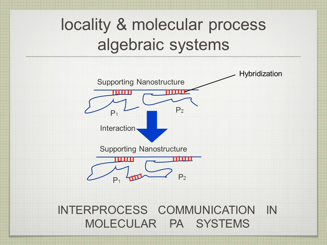 locality & molecular process algebraic systems Supporting Nanostructure P1P1 P2P2 P1P1 P2P2 Interaction Hybridization INTERPROCESS COMMUNICATION IN MOLECULAR PA SYSTEMS