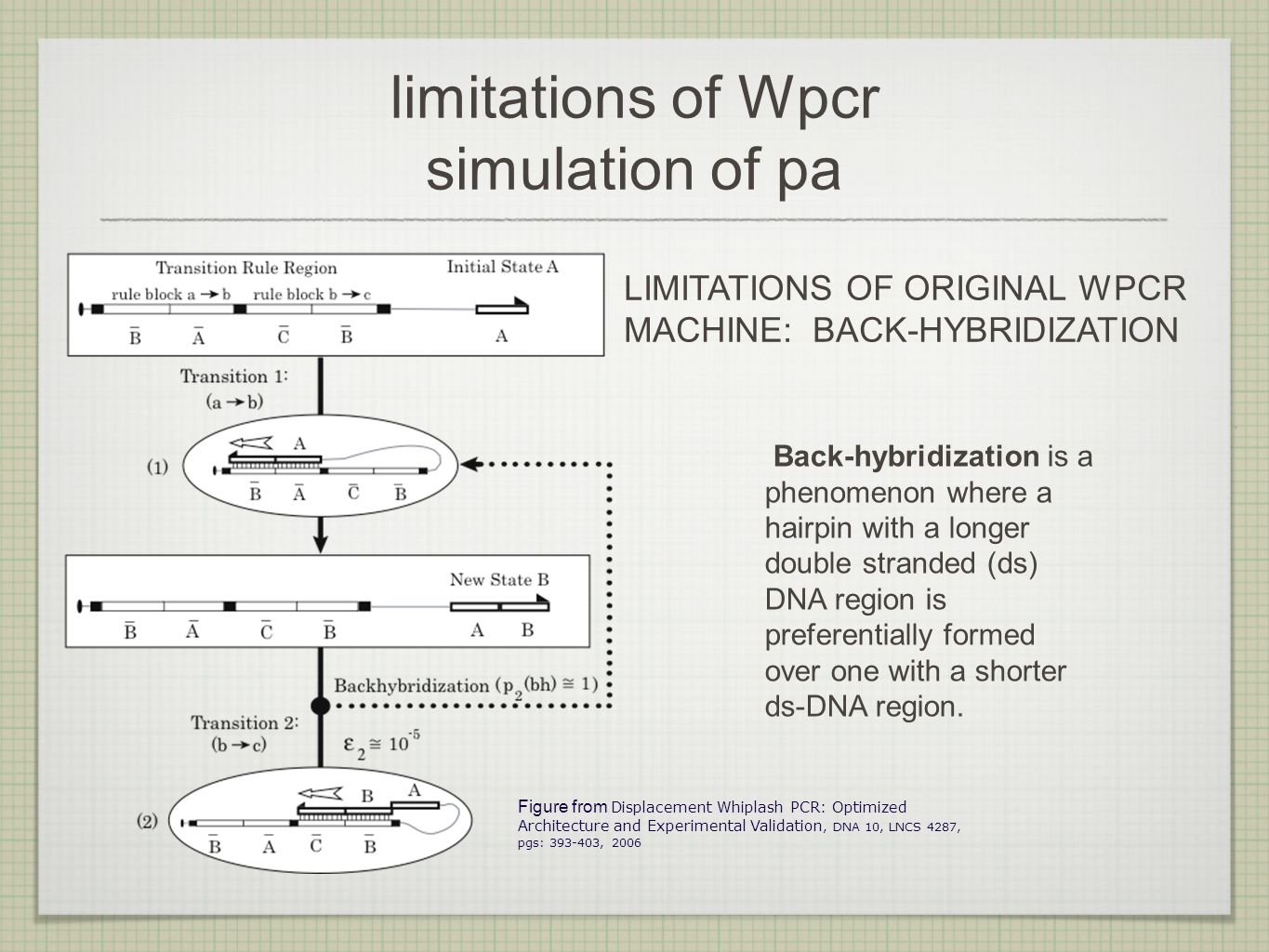 limitations of Wpcr simulation of pa LIMITATIONS OF ORIGINAL WPCR MACHINE: BACK-HYBRIDIZATION Figure from Displacement Whiplash PCR: Optimized Architecture and Experimental Validation, DNA 10, LNCS 4287, pgs: 393-403, 2006 Back-hybridization is a phenomenon where a hairpin with a longer double stranded (ds) DNA region is preferentially formed over one with a shorter ds-DNA region.