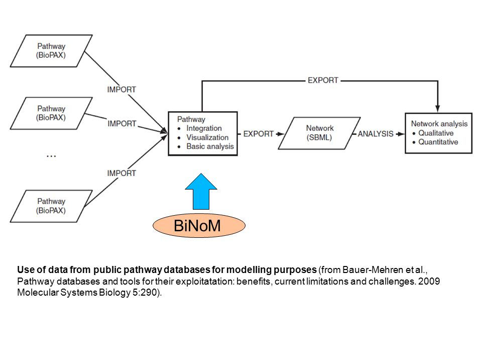 Use of data from public pathway databases for modelling purposes (from Bauer-Mehren et al., Pathway databases and tools for their exploitatation: benefits, current limitations and challenges.